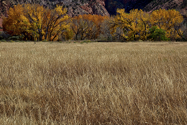 Stuart Litoff - Autumn at the Ghost Ranch